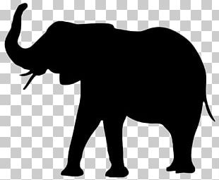 Asian Elephant Png Images Asian Elephant Clipart Free Download Elephant vector african elephant indian elephant african bush elephant elephant seal elephant and the white rabbit elephant gold. asian elephant png images asian