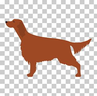 Kerry Blue Terrier Bedlington Terrier Irish Terrier Puppy PNG
