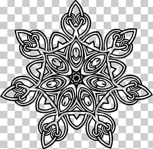 Geometry Line Art Floral Design PNG