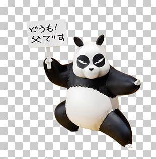 Genma Saotome Ryu Kumon Giant Panda Nodoka Saotome Ranma ½ PNG