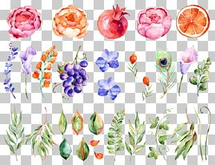 Flower Watercolor Painting PNG