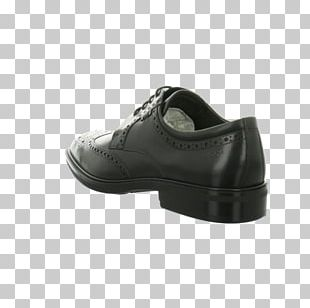 Derby Shoe Valentino SpA Sneakers Oxford Shoe PNG