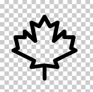 Canada Maple Leaf Computer Icons PNG