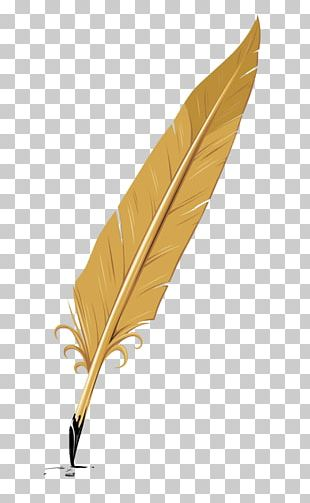 Writing Quill Feather Pen PNG