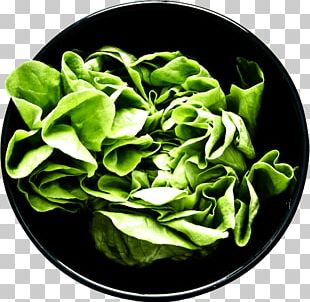 Spinach Artisanal Crepes & Waffles Lyrics Food Song PNG