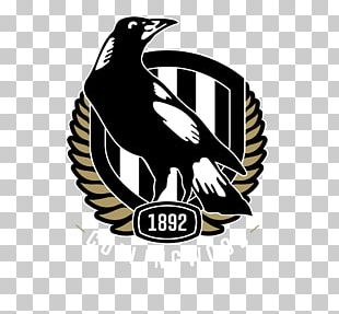 Collingwood Football Club Australian Football League Greater Western Sydney Giants Carlton Football Club Essendon Football Club PNG