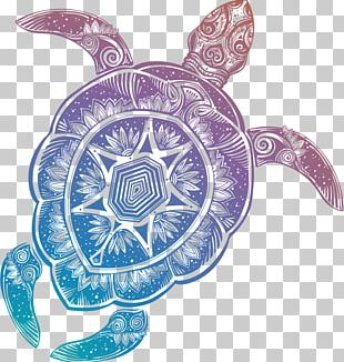 Sea Turtle RSS Web Feed Blog Tortoise PNG