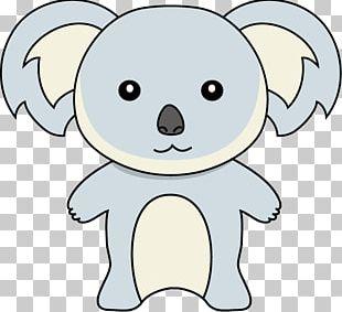 Dog Koala Drawing PNG