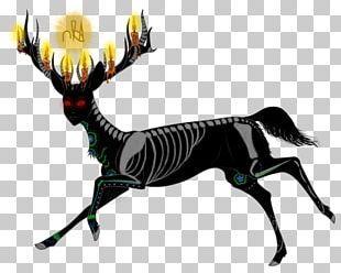 Reindeer Horse Antler Mammal PNG