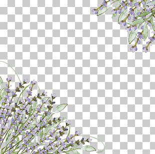 Wedding Invitation Lavender Purple Flower PNG