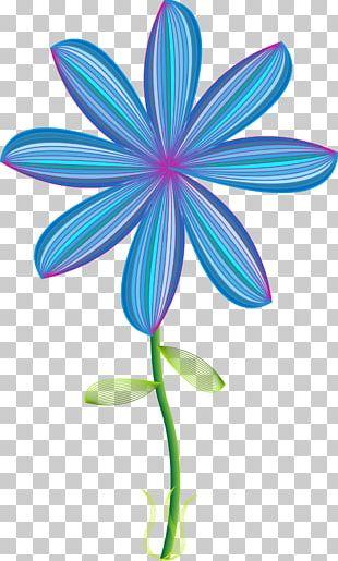Petal Flowering Plant Line Pollinator PNG