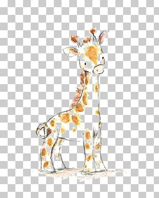 Giraffe Drawing Watercolor Painting Infant Child PNG