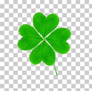 Four-leaf Clover Saint Patricks Day PNG