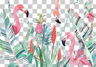 Bird Flower Animal Illustration PNG