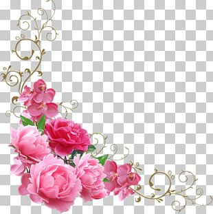Garden Roses Sticker Label Novohrad-Volyns'kyi Medychnyy Koledzh Adhesive Tape PNG