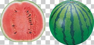 Watermelon Food PNG