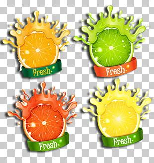 Fruit Logo PNG