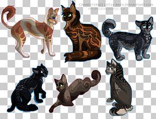 Kitten Munchkin Cat Felidae Animal PNG