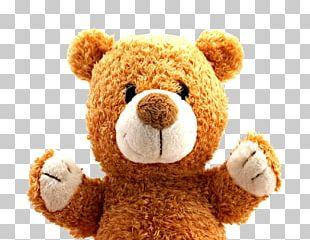 Teddy Bear PNG