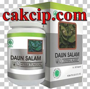 Indonesian Bay Leaf Herb Health Gresik Regency PNG