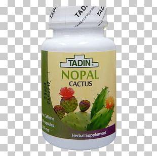 Herbal Tea El Nopal Aloe Vera PNG