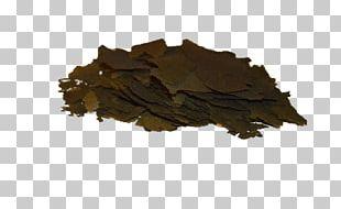 Bancha Leaf PNG