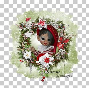 Christmas Ornament Floral Design Wreath Rose Family PNG
