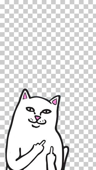 Desktop Cat PNG
