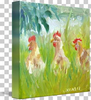 Rooster Watercolor Painting Acrylic Paint PNG