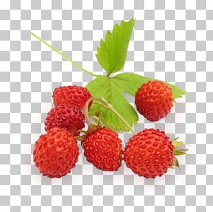 Wild Strawberry Berries Fruit Raspberry PNG