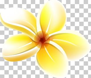 Yellow Flower PNG