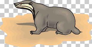 Sloth Animal PNG
