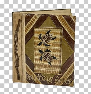 Daytona Beach Turtle /m/083vt Wood Photo Albums PNG