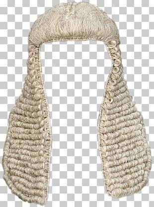 Wig Judge PNG