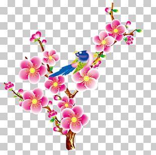Floral Design Bird Flower PNG