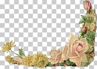 Borders And Frames Floral Design Flower Rose PNG