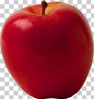 Diet Food Book Apple Fruit PNG