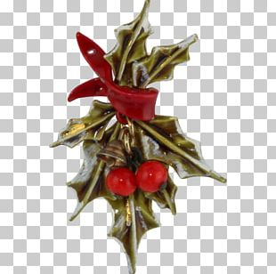 Holly Christmas Decoration Aquifoliales Christmas Ornament PNG