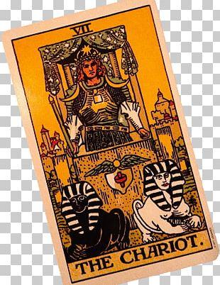 Animals Divine Tarot Angel Tarot Cards The Chariot Nine Of Swords