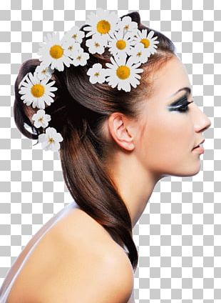 Beauty Parlour Hairstyle Cosmetologist Hair Loss PNG