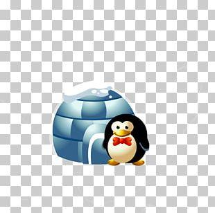 Arctic Penguin Cartoon Animation PNG