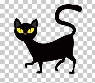 Cat T-shirt Halloween PNG