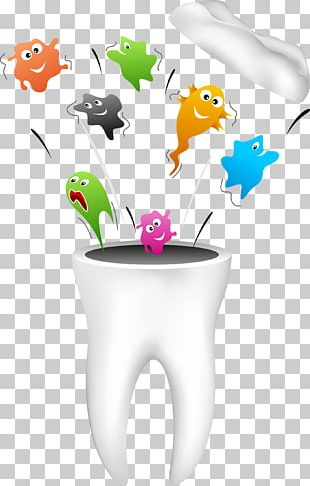 Dentistry Human Tooth Dental Hygienist PNG