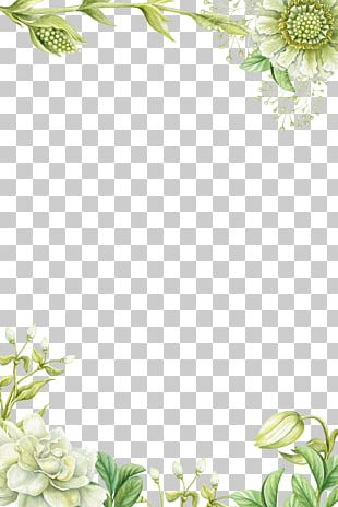 Painting Flower PNG