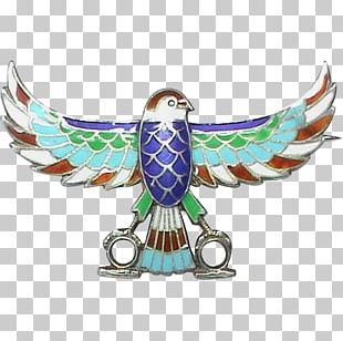 Eagle Feather Beak Wing PNG
