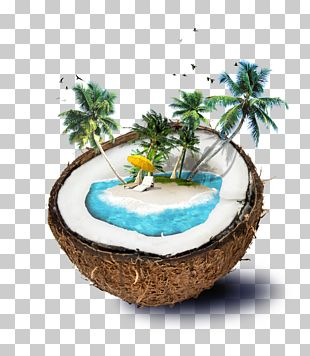 Coconut Water Travel PNG