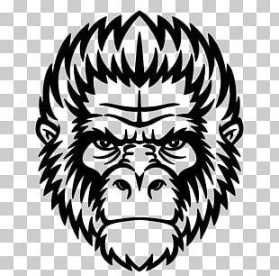 Ape Chimpanzee Gorilla Mandrill Monkey PNG