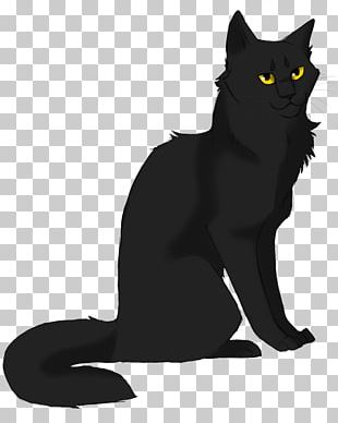 Cats Of The Clans Warriors Stormfur Feathertail PNG
