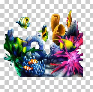 Coral Seaweed Photography PNG