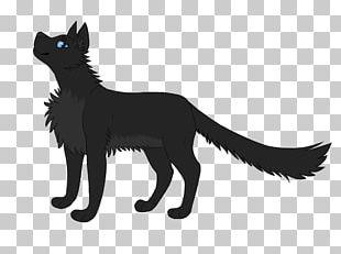 Black Cat Whiskers Kitten Dog PNG